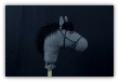 Charcoal Gray Stick Horse